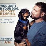 Brian McFadden Says No To Fur Farms In Ireland
