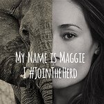 Celebrities Join The Herd To Stop Elephant Poaching