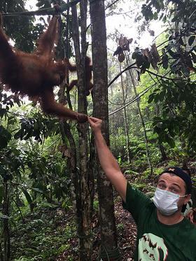 Leonardo DiCaprio Meets A Sumatran Orangutan In Indonesia's Leuser Ecosystem