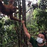 Leonardo DiCaprio Visits Indonesia's Leuser Ecosystem