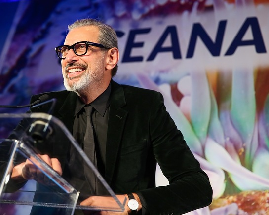 Jeff Goldblum At Oceana NYC Gala 2016