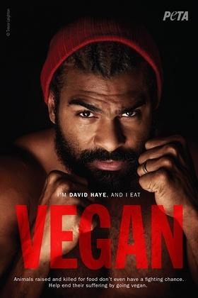 David Haye PETA Ad