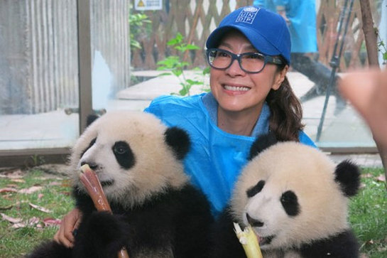 Michelle Yeoh has teamed up with UNDP's first-ever Animal Ambassadors, two panda cubs, to kick off the Pandas for the Global Goals campaign