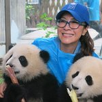 Michelle Yeoh And Panda Cubs Help Promote Global Goals