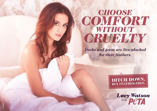 Lucy Watson: Choose Comfort Without Cruelty