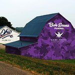 Bob Evans Farms Goes Purple For Gary Sinise Foundation