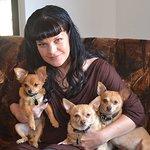 Stars Shine For Remember Me Thursday Global Pet Adoption Awareness Campaign