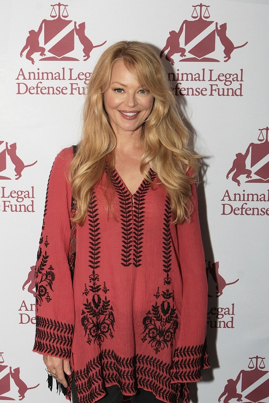 Charlotte Ross attends the premiere of the award-winning documentary Of Dogs and Men