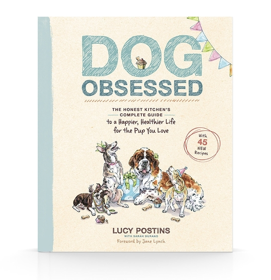 Dog Obsessed, written by Lucy Postins