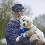 Dogs And Cats Saved From China's Yulin Dog Meat Festival Find Happy Homes In The UK