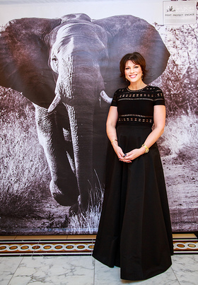 Kate Silverton Attends David Shepherd Wildlife Foundation Fundraising Ball
