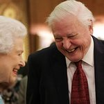 David Attenborough Attends The Queen's Commonwealth Canopy Conservation Initiative Reception