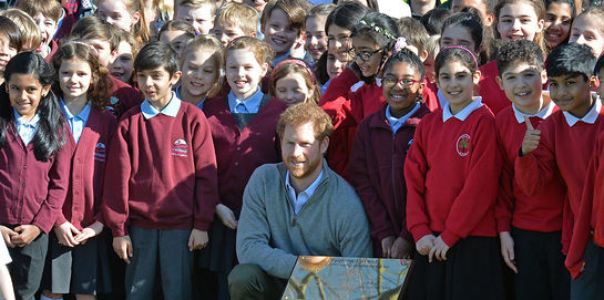 Prince Harry views the Wood Pasture Restoration Project