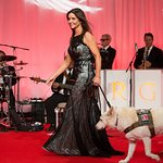 Petco Foundation Honors Animal Welfare's Best In Show