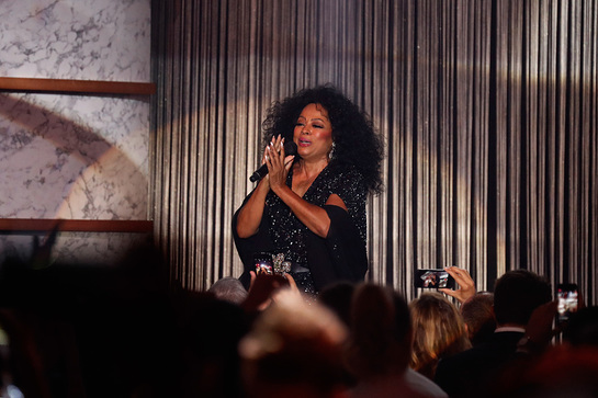Diana Ross Performs At amfAR Cannes Gala