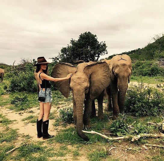 Maggie Q with elephants
