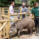 Prince Charles Visits Jimmy's Farm
