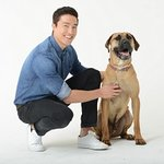 Daniel Henney Calls For An End To South Korea's Dog Meat Trade