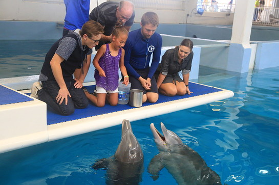 Mayra Gillis meets Winter and Hope the dolphins with the cast of the Dolphin Tale movies