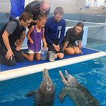 Dolphin Tale Movie Stars Surprise a Special Child