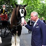 Prince Of Wales Launches New Royal Parks Charity In Hyde Park