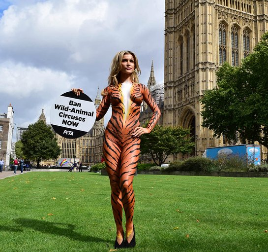 Joanna Krupa Calls for Ban on Animal Circuses