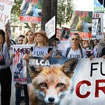 Mena Suvari And Donna D'Errico On Fur Free Friday