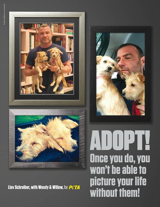 Liev Schreiber PETA Ad