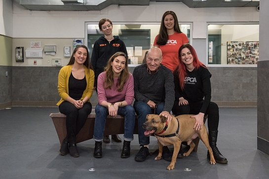 Patrick Stewart at the ASPCA Canine Annex for Recovery and Enrichment