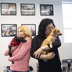 Gene Simmons Partners With iHeartDogs To Surprise Local Dog Rescue