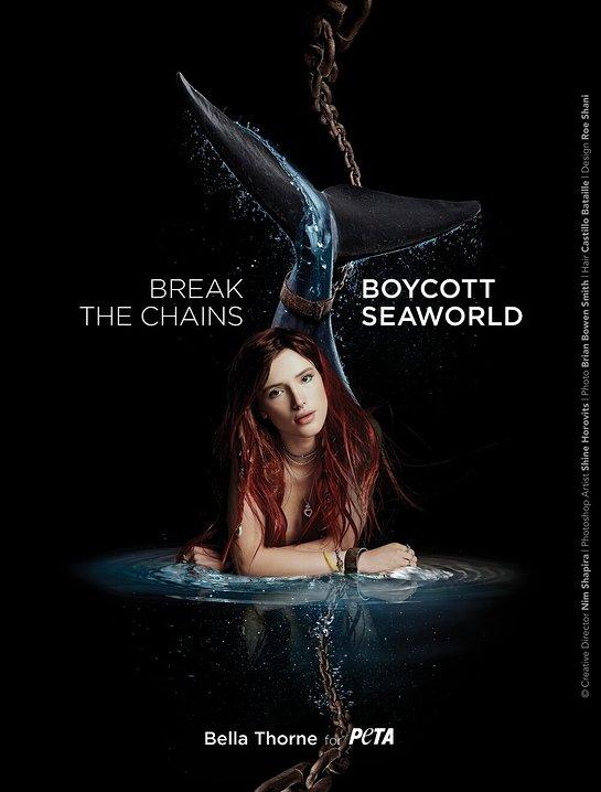 Bella Thorne - Boycott SeaWorld