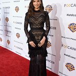 Stars Attend Barbara Berlanti Heroes Gala Benefitting F Cancer