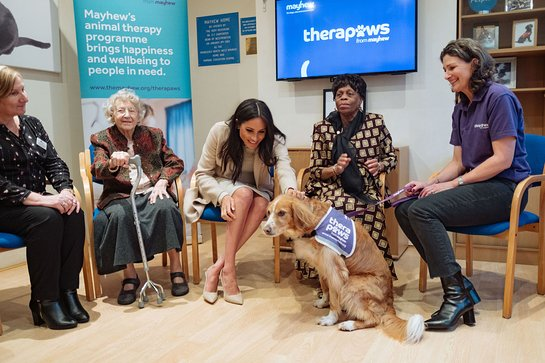 The Duchess Of Sussex Makes A New Friend
