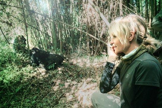 Portia de Rossi Meets Gorillas in Rwanda