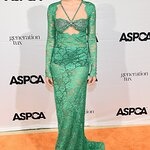 Stars Attend 22nd Annual ASPCA Bergh Ball