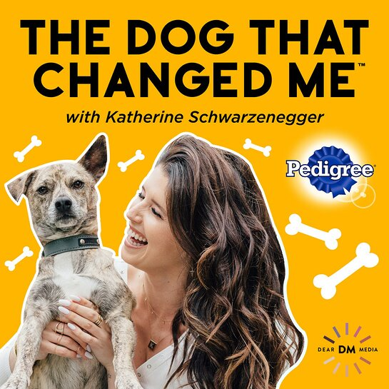 THE DOG THAT CHANGED ME with Katherine Schwarzenegger, sponsored by PEDIGREE