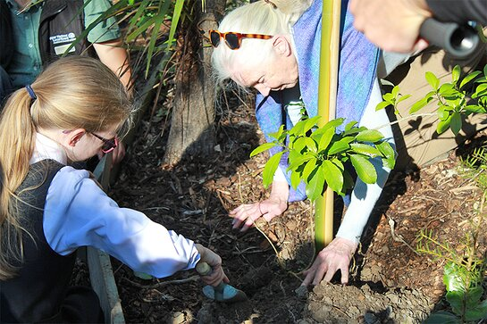 Jane and a student planting a tree