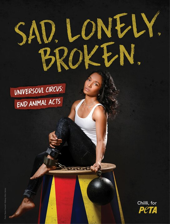 TLC's Chilli Says No To UniverSoul Circus