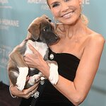 Stars Attend 2019 American Humane Hero Dog Awards