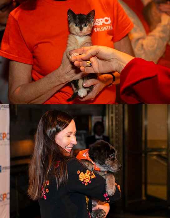 Adoptable kittens and puppies joined the guests and honorees.