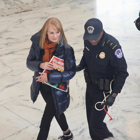 Marg Helgenberger was arrested for civil disobedience at the November 16th Fire Drill Friday event.