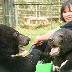 Global Superstars Demand End to Animal Mistreatment