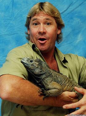 Krokodiljäger Steve Irwin