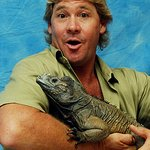 Celebrate Steve Irwin Day At Australia Zoo
