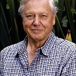 The National Audubon Society To Honor Sir David Attenborough