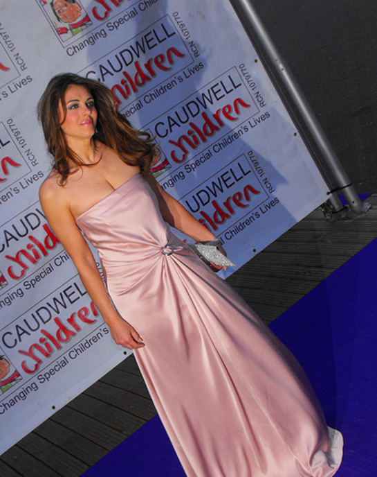Elizabeth Hurley at the 2009 Butterfly Ball