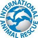 International Animal Rescue (IAR)