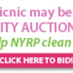 Bette Midler's Celebrity Charity Auction To Close Soon