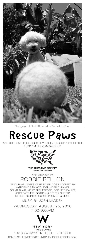 Rescue Paws