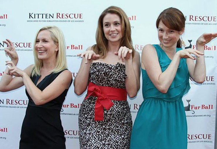 "Angela Kinsey (""The Office""), Jenna Fischer (""The Office""), Ellie Kemper (""The Office"") show their purrfect kitty poses at Kitten Rescue's 3rd Annual Fur Ball at the Skirball"